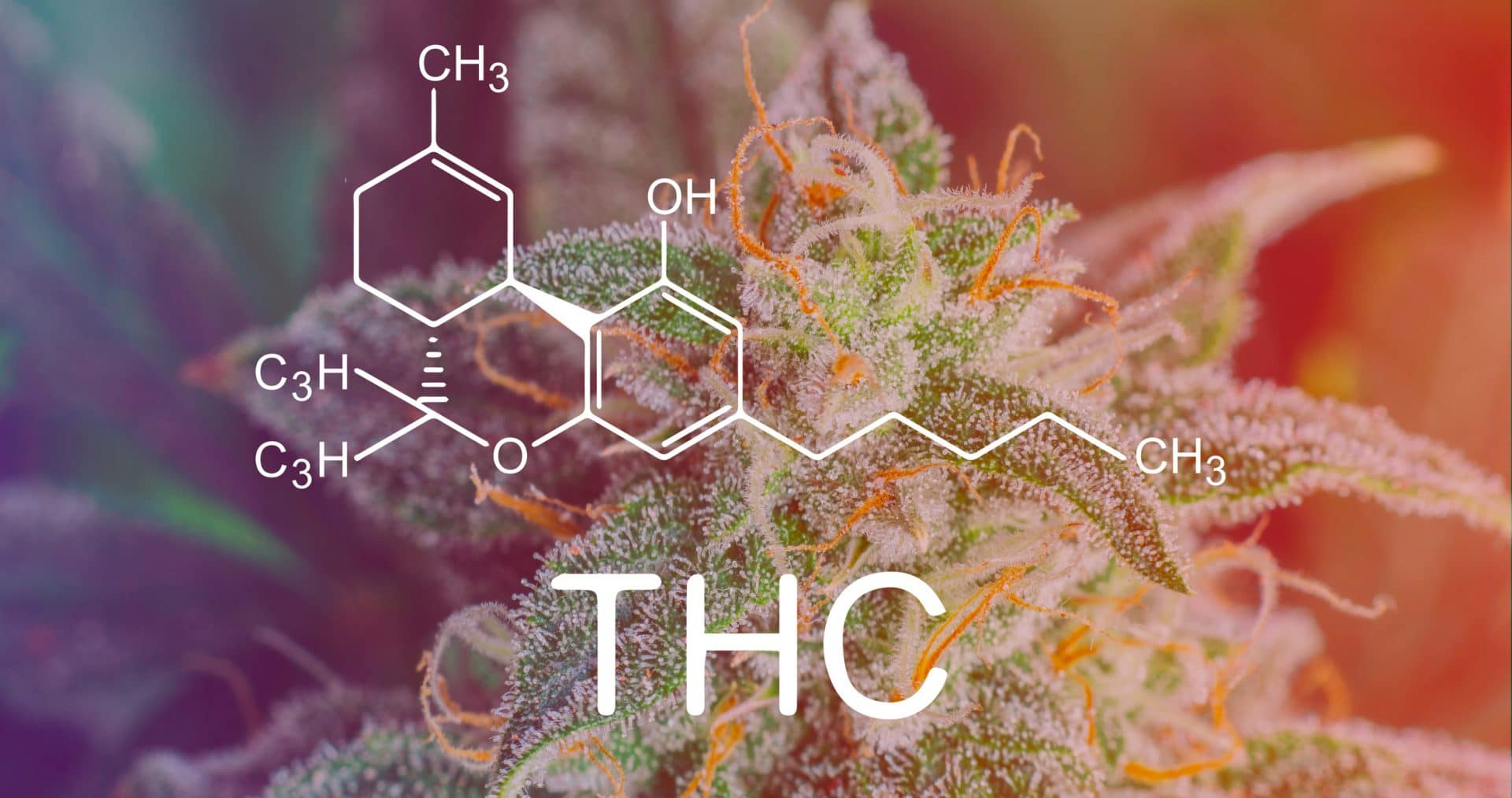 Effetti del THC