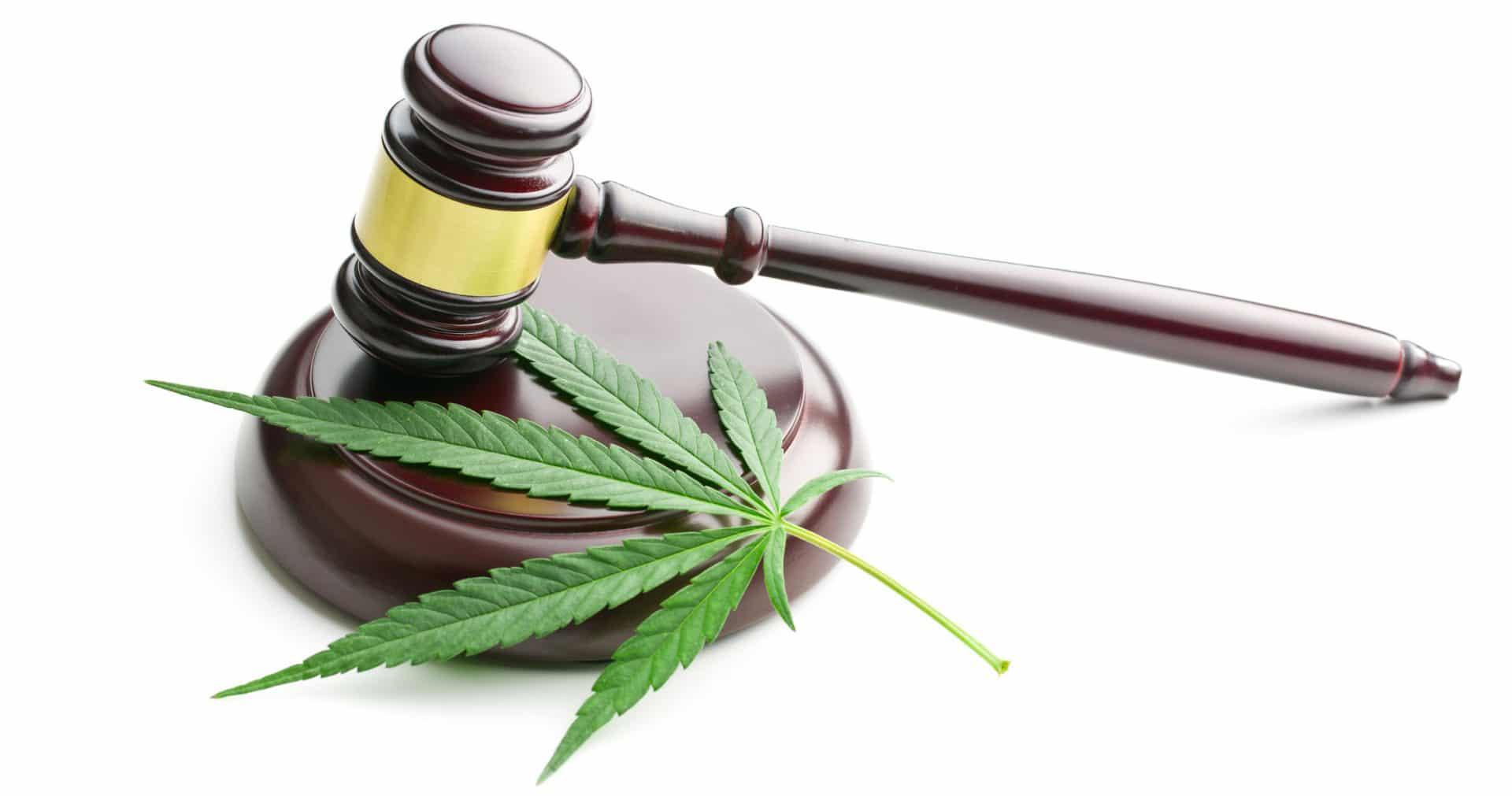 Legge sulla cannabis