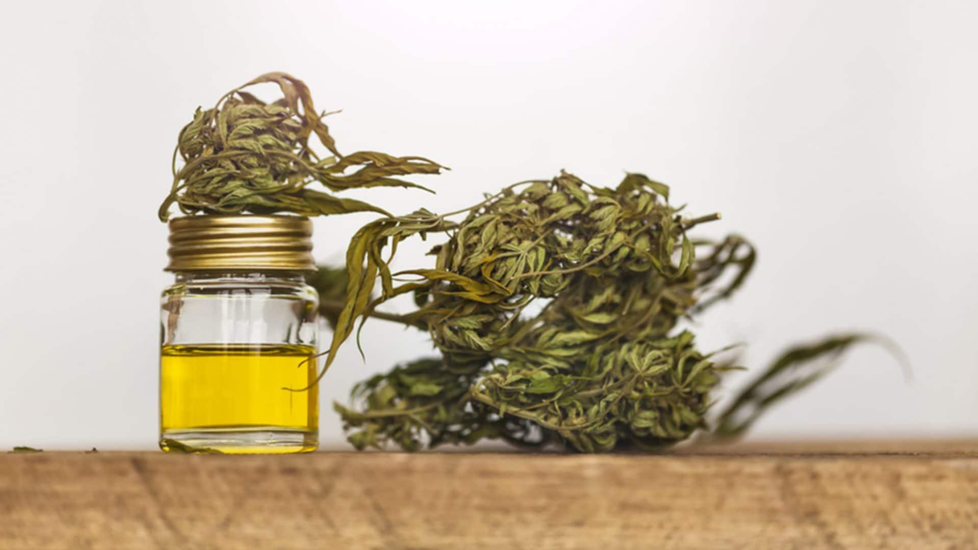 olio di cbd naturale