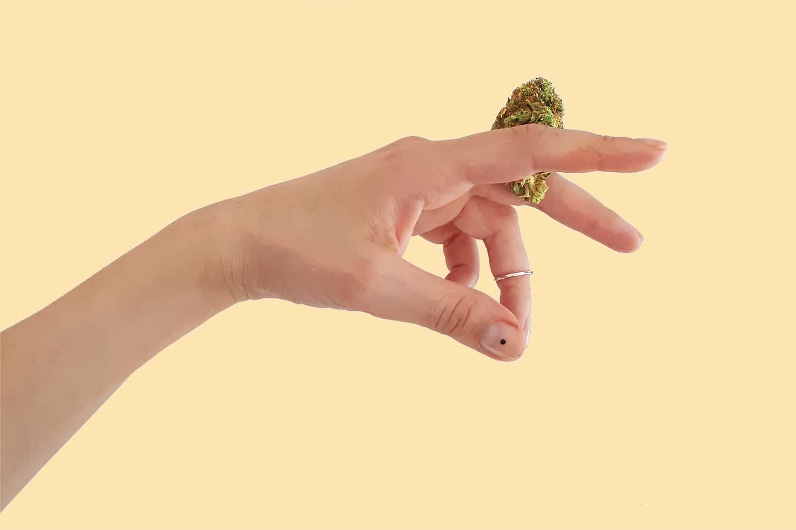 codici coupon per cannabis legale